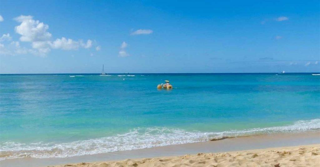 Beach Rental Business Success - Aqua-Cycle Water Trikes in Waikiki surf